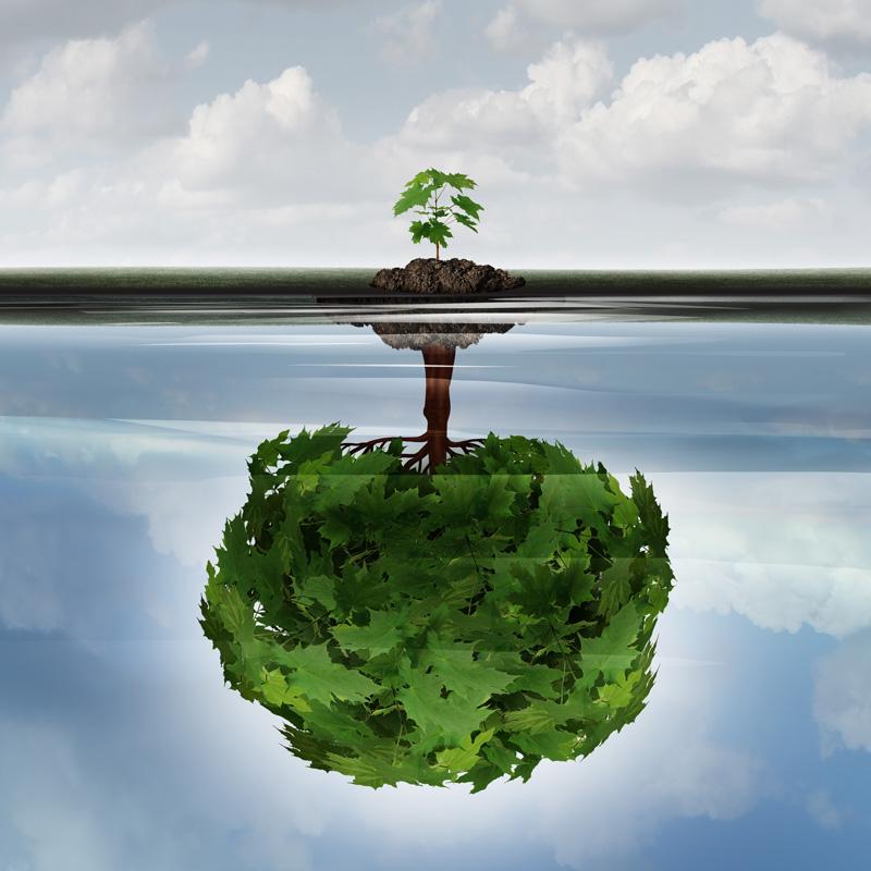 potential vs experience tree